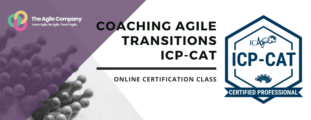Coaching Agile Transitions