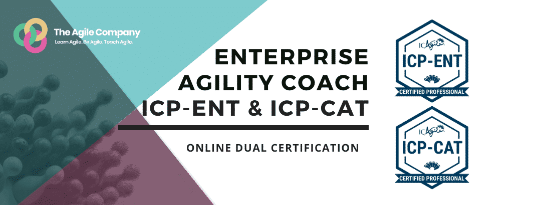 Enterprise Agility Coaching