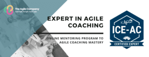Expert in Agile Coaching